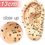 Beaut 耳模型 耳つぼジュエリー 13cmタイプ~日本語表記【Beaut限定耳つぼ図解付き】