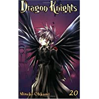 Dragon Knights Volume 20