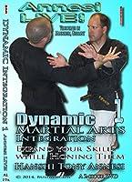 Dynamic Martial Arts Integration