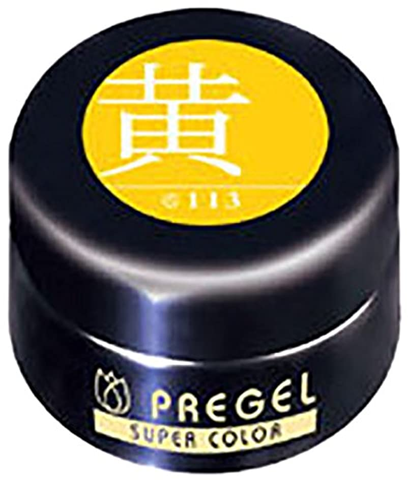 読みやすさ翻訳する入り口プリジェル スーパーカラーEX 黄 4g PG-SE113 カラージェル UV/LED対応