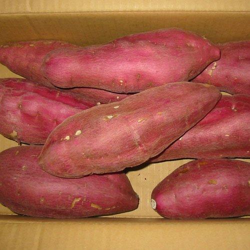 徳島県産さつまいも 鳴門金時芋 3Lサイズ 5kg詰め