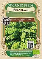 サラダ バーネット/有機 種子 固定種/グリーンフィールド/ハーブ [小袋]
