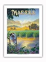 マデラ(サン・ホアキン・バレー)・ワイナリー - セントラルヴァレーAVAブドウ園 - カリフォルニアワインカントリーアート によって作成された カーン・エリクソン - プレミアム290gsmジークレーアートプリント - 30.5cm x 41cm