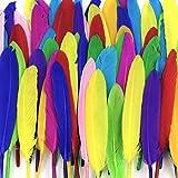 TOPTOMMY 染め羽根 ガチョウの羽 10-15CM 工芸品 DIY 装飾用の羽根 多色 (100枚 多色)
