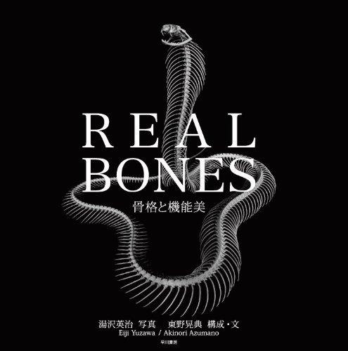 REAL BONES 骨格と機能美