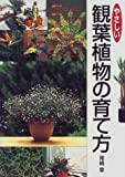 やさしい観葉植物の育て方