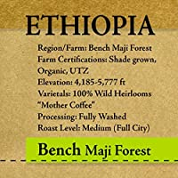 RöstHaus Single Origin Coffee - Whole Bean Specialty Grade Coffee - Freshly Roasted Only After Purchase! (Ethiopia - Bench Maji Wild Forest Organic)