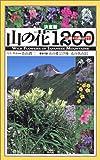 決定版 山の花1200-山麓から高山まで