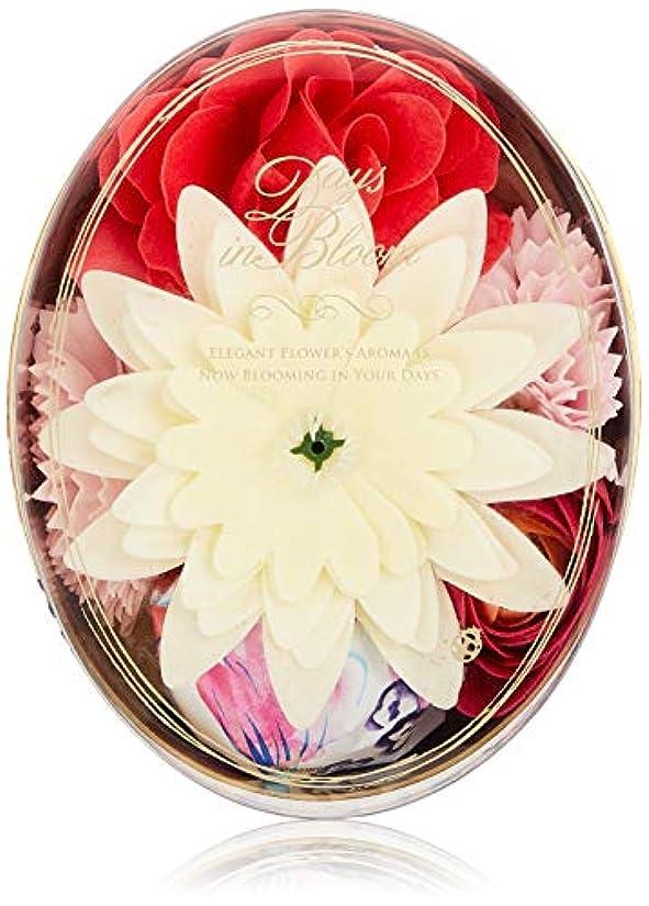 モデレータ錫赤道デイズインブルーム バスセットオーバル ローズ (入浴料 お花の形のバスギフト)