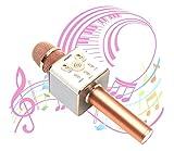 【DENOU】 高音質 スマホカラオケ(家庭用 Bluetooth カラオケマイク) 日本語説明書 & 1年保証付き / ピンクゴールド