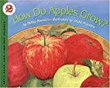 How Do Apples Grow? (Let's-Read-and-Find-Out Science Stage 2)