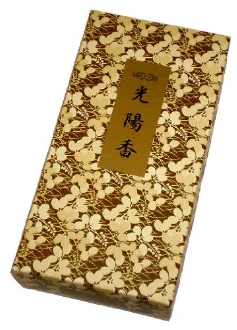 オペレーター目的ふさわしい玉初堂のお香 光陽香 500g #661