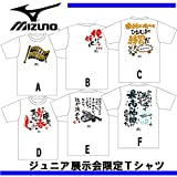 MIZUNO(ミズノ) ジュニアメッセージ入りTシャツ (12ja5t9401) D(前デザイン) 150