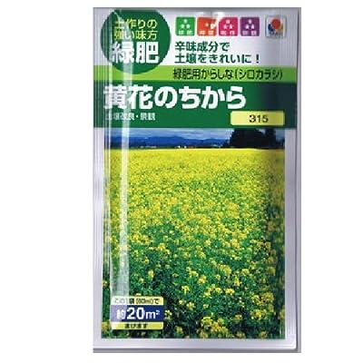 【緑肥】緑肥用からしな 黄花のちから(からしなの種) 小袋(約60ml)
