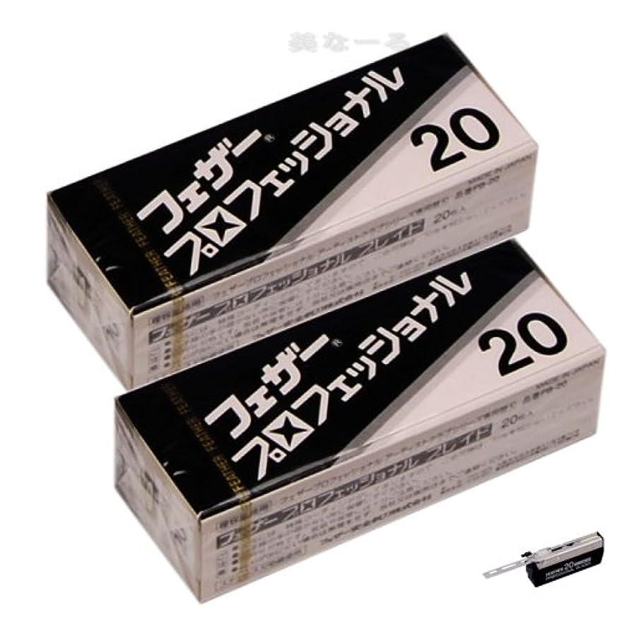 事件、出来事煩わしいスケッチ【2個セット】フェザープロフェッショナルブレイド 20枚入 PB-20