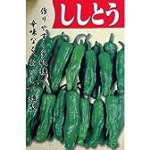 ししとう 種 【 ししとう 】 種子 小袋(約2ml)