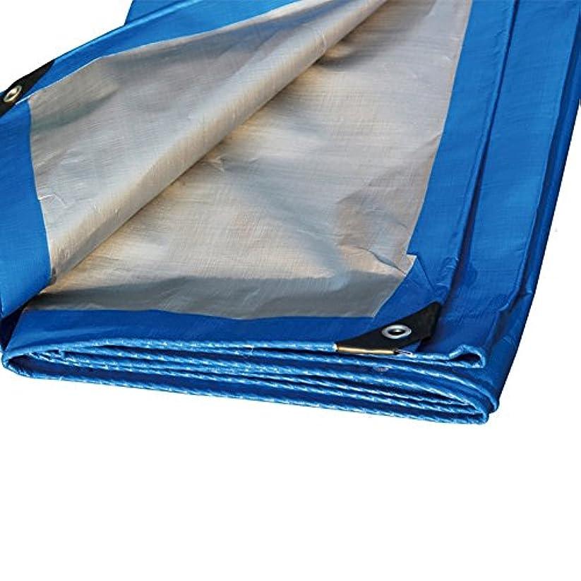 精神医学リーン逃げるWJ タープ- ブルーカラーポリエチレンプラスシックレインクロス防水日焼け防止10種類のサイズは倉庫に使用することができます建設工場工場と企業湾岸埠頭 /-/ (Size : 4 x 5m)