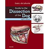 Guide to the Dissection of the Dog - E-Book (.Net Developers)