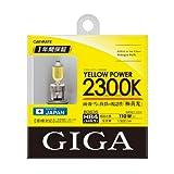 カーメイト 車用 ハロゲン ヘッドライト GIGA イエローパワー HB3/HB4共通 2300K 1300lm BD635