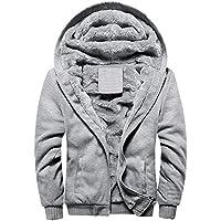 Tomsweet Men's Winter Sweatshirt Thicken Brushed Zip up Hoodies Jacket Overcoat