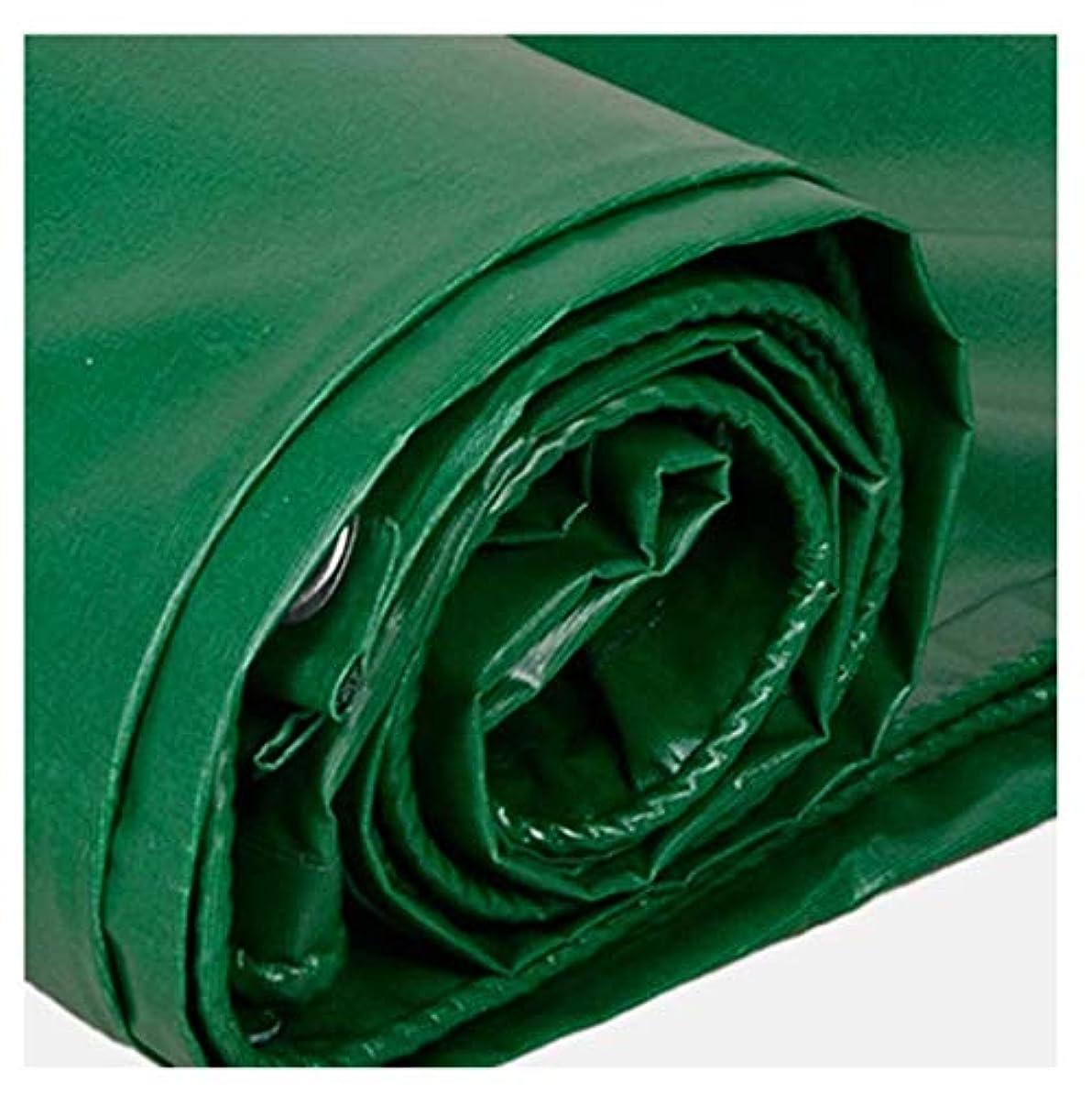 座標に向けて出発回転させる防水シート防水ヘビーデューティ ターポリンヘビーデューティーターポリン高密度織物アウトドアトラベルキャンプ用に最適プールカバーピクニックキャンプハイキング釣り用ペットカーゴカバー 強いグリーン防水防水シート (サイズ さいず : 6*5m)