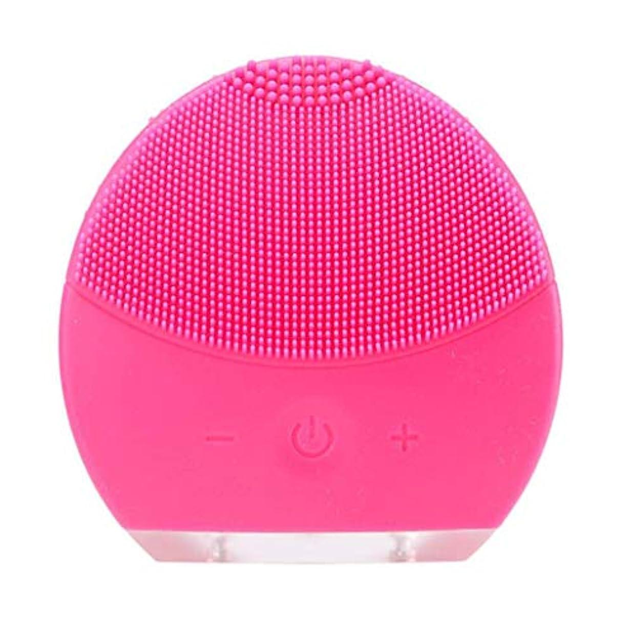 想像力陰謀プラカード超音波振動美容機器洗浄器、皮膚の毛穴を最小限に抑えるマイクロダーマブレーション毛穴、USB 充電と防水,Rosered