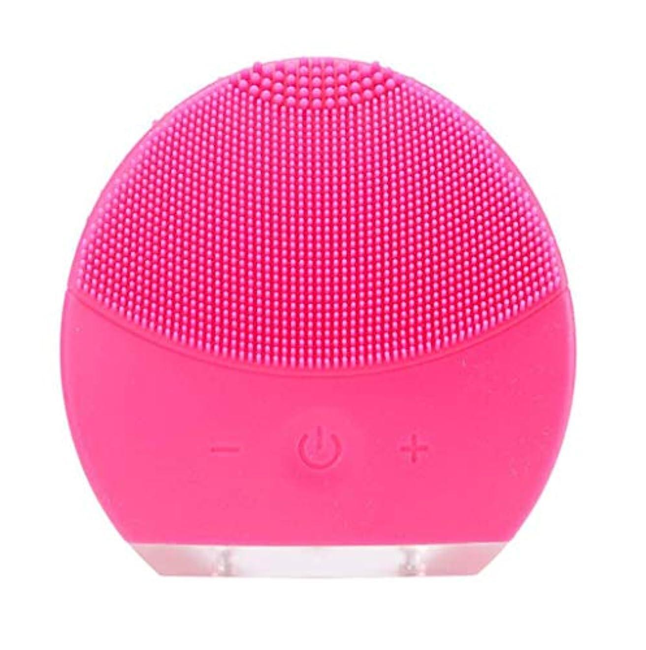 アンタゴニストレオナルドダスーツケース超音波振動美容機器洗浄器、皮膚の毛穴を最小限に抑えるマイクロダーマブレーション毛穴、USB 充電と防水,Rosered