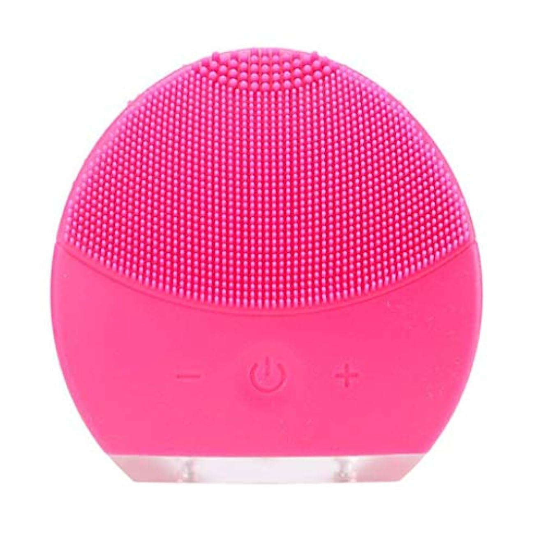 セマフォフリンジパネル超音波振動美容機器洗浄器、皮膚の毛穴を最小限に抑えるマイクロダーマブレーション毛穴、USB 充電と防水,Rosered