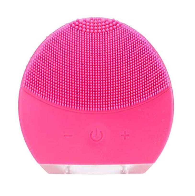 学期コミュニケーションバック超音波振動美容機器洗浄器、皮膚の毛穴を最小限に抑えるマイクロダーマブレーション毛穴、USB 充電と防水,Rosered