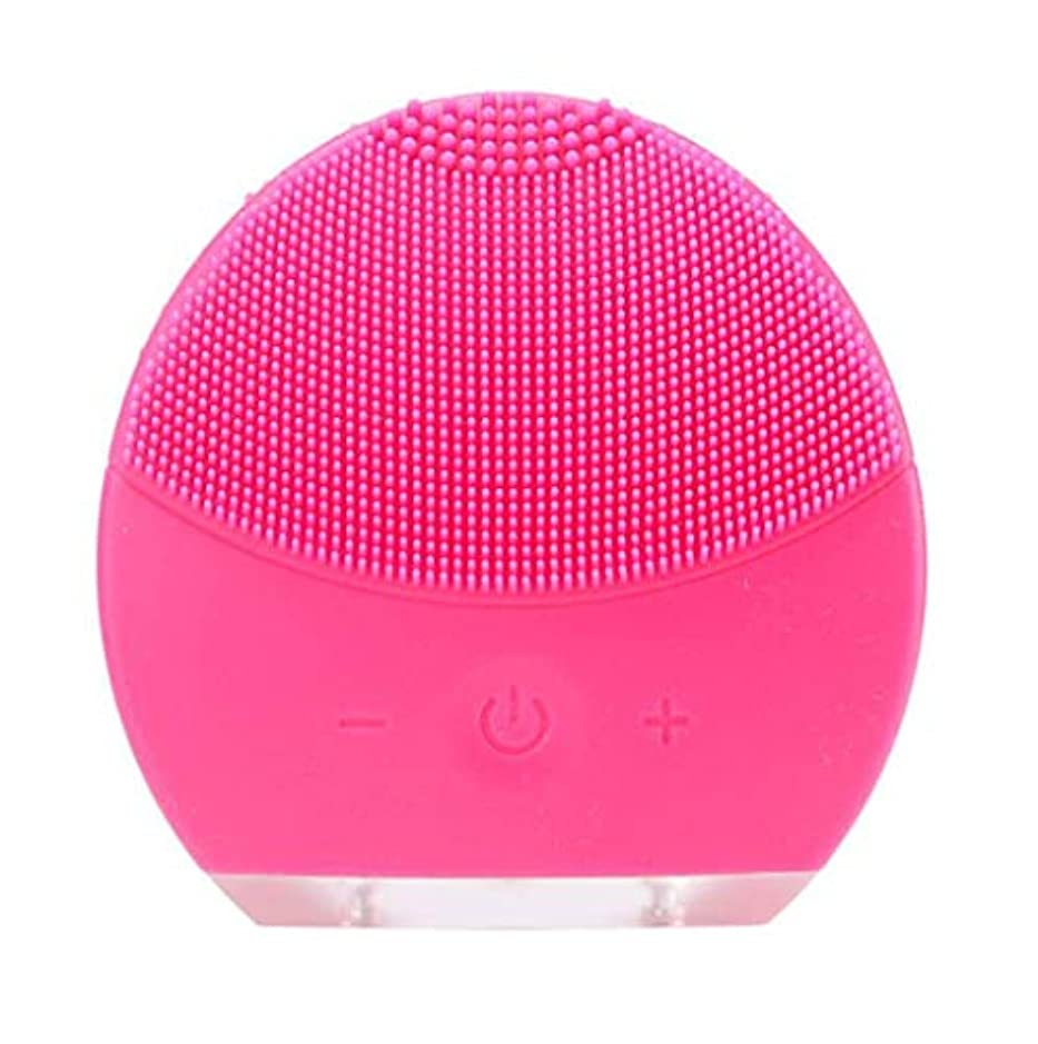 浴室クラフトうめき超音波振動美容機器洗浄器、皮膚の毛穴を最小限に抑えるマイクロダーマブレーション毛穴、USB 充電と防水,Rosered