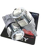 (ライミー)LIMEY LED T10 青 バルブ 明るい 3チップ搭載 5050 SMD?5連 LEDバルブ T10ウェッジ ブルー 12V専用 2個入り 取扱説明書&保証書付き 【ベース:シルバー】 L-T10B5050C2STS
