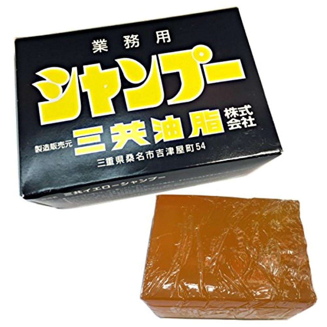 リアルボトルネック食い違い三共油脂 三共イエローシャンプー 容量1800g