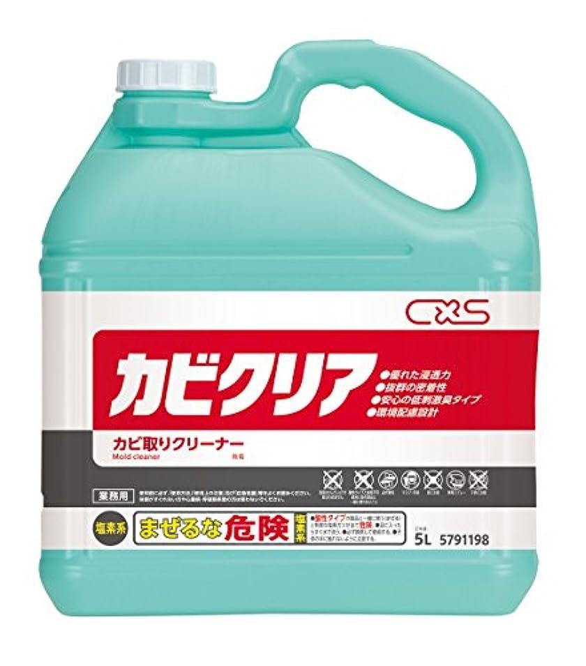 電気死にかけている肥料【大容量】 シーバイエス カビクリア 5L