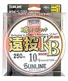 サンライン(SUNLINE) ナイロンライン 磯スペシャル 遠投 カゴ・ぶっこみ 250m 10号