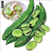【メール便配送】国華園 野菜たね マメ 一寸そら豆 1袋(25ml入)【※発送が国華園からの場合のみ正規品です】