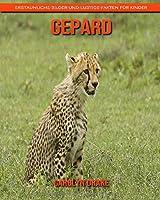 Gepard: Erstaunliche Bilder und lustige Fakten fuer Kinder