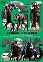 中央競馬GIレース 2016総集編 DVD