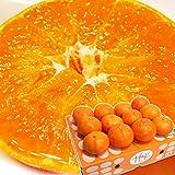 みかん 甘平 秀品 約3kg L~3Lサイズ 10~15玉 JAにしうわ 愛媛県 産地直送 (出荷予定時期:1月27日~2月10日)
