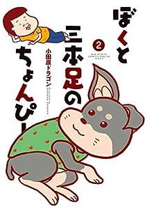 ぼくと三本足のちょんぴー(2) (ビッグコミックススペシャル)