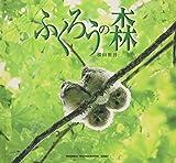 ふくろうの森 (SEISEISHA PHOTOGRAPHIC SERIES) 画像