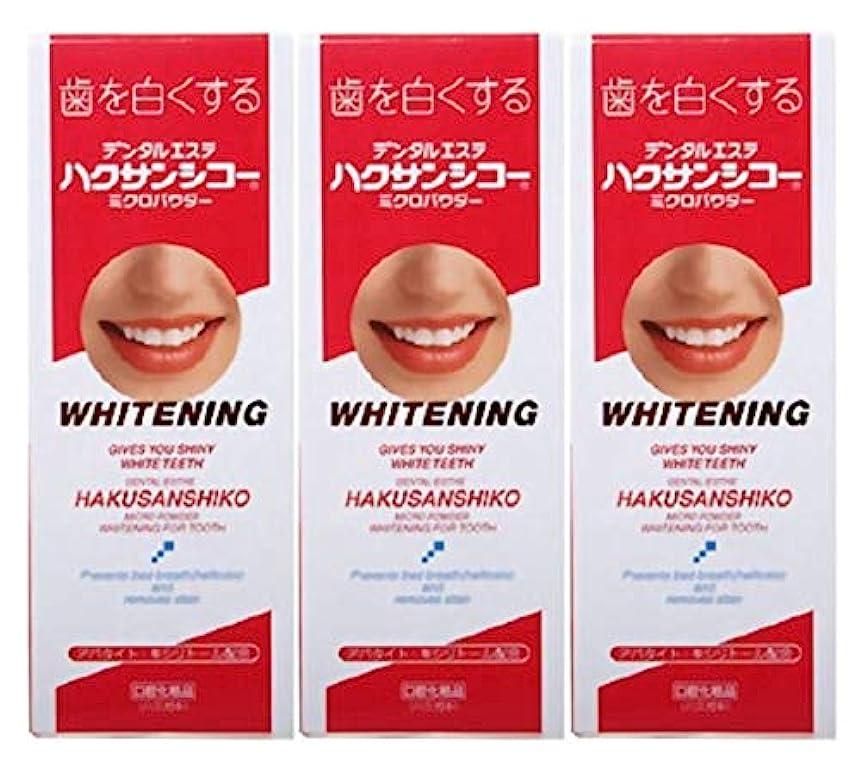 先見の明渇き誤解を招く中薬 ハクサンシコー ミクロパウダー 30g × 3個