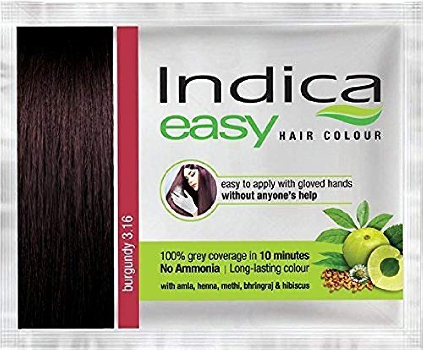 弾丸既婚エレガントNexxa 6Pc Indica Easy10 Minutes Herbal Hair Color Shampoo Base Burgundy Herbs