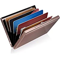 GreatShield Stainless Steel RFID Blocking Identity Protection Card Holder (6 Slots) - Silver