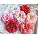 Baoblaze 10個入り 美しい 人工造花 椿の花 ヘッド 結婚式 パーティー 結婚式の車の装飾花 ブローチ 花のボール コサージュ 多色選べる  - 桃赤