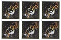 Spiritual Awakenings動物–Beautiful Bengal Tiger印刷とフレーム–グリーティングカード Set of 6 Greeting Cards
