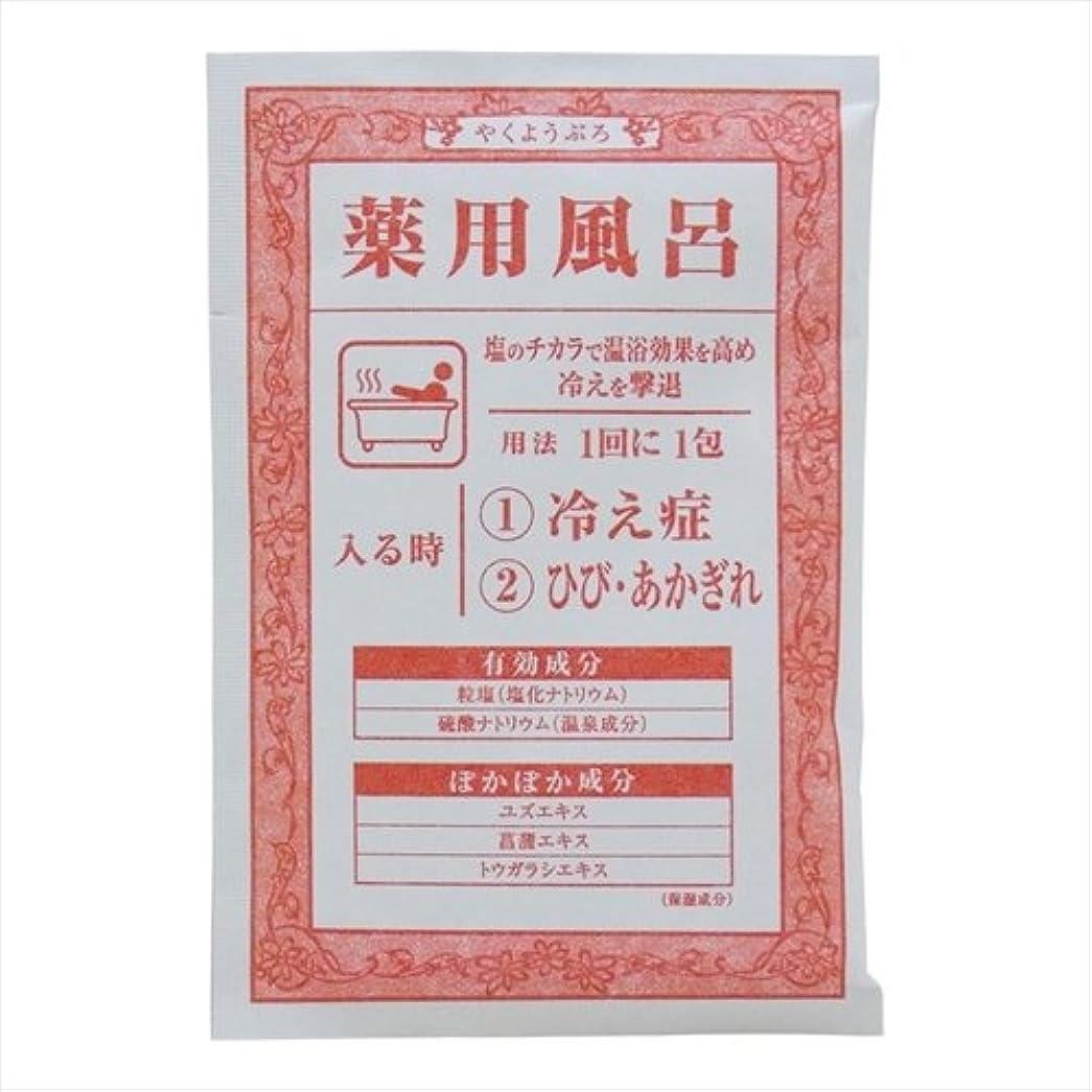 教育活力シソーラス薬用風呂 冷え症 1回分 40g