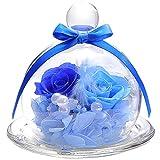 TEATSIGHT プリザーブドフラワー フラワーアレンジ ラッピング済み ガラスポット入り 2輪 (バラ ブルー)