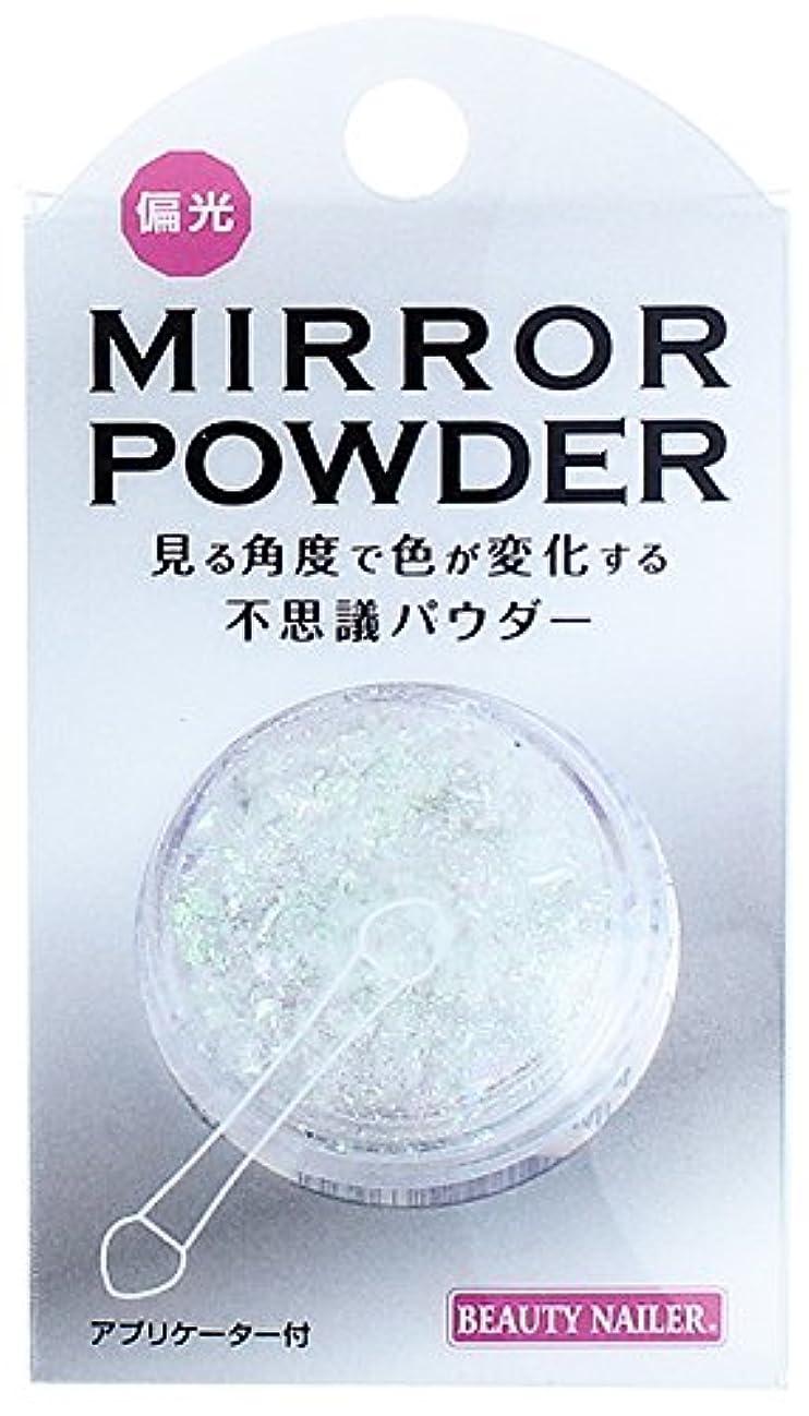 薄暗い家事をする冷蔵庫ビューティーネイラー 偏光ミラーパウダー HMP-5 ホワイトオーロラ
