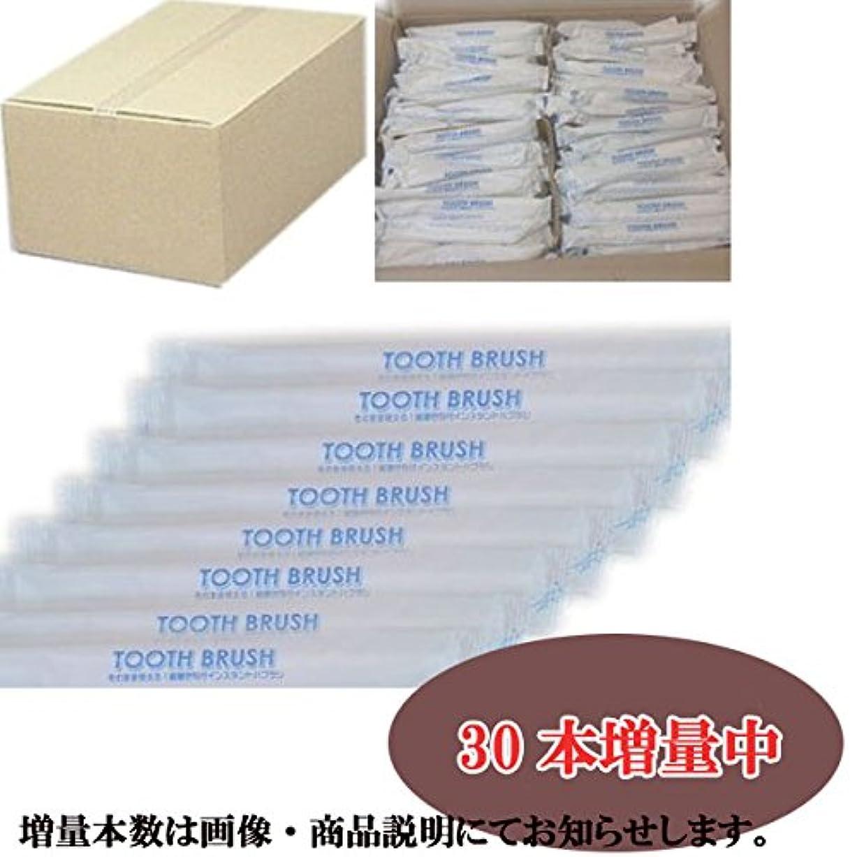 ポーチゴミ箱プライム業務用 粉付き歯ブラシ(500本組)