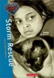Storm Rescue (Wild at Heart)